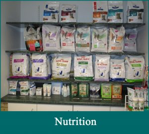 Cat Doctor Nutrition Service selection